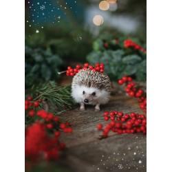AM 309 Kalėdinis atvirukas