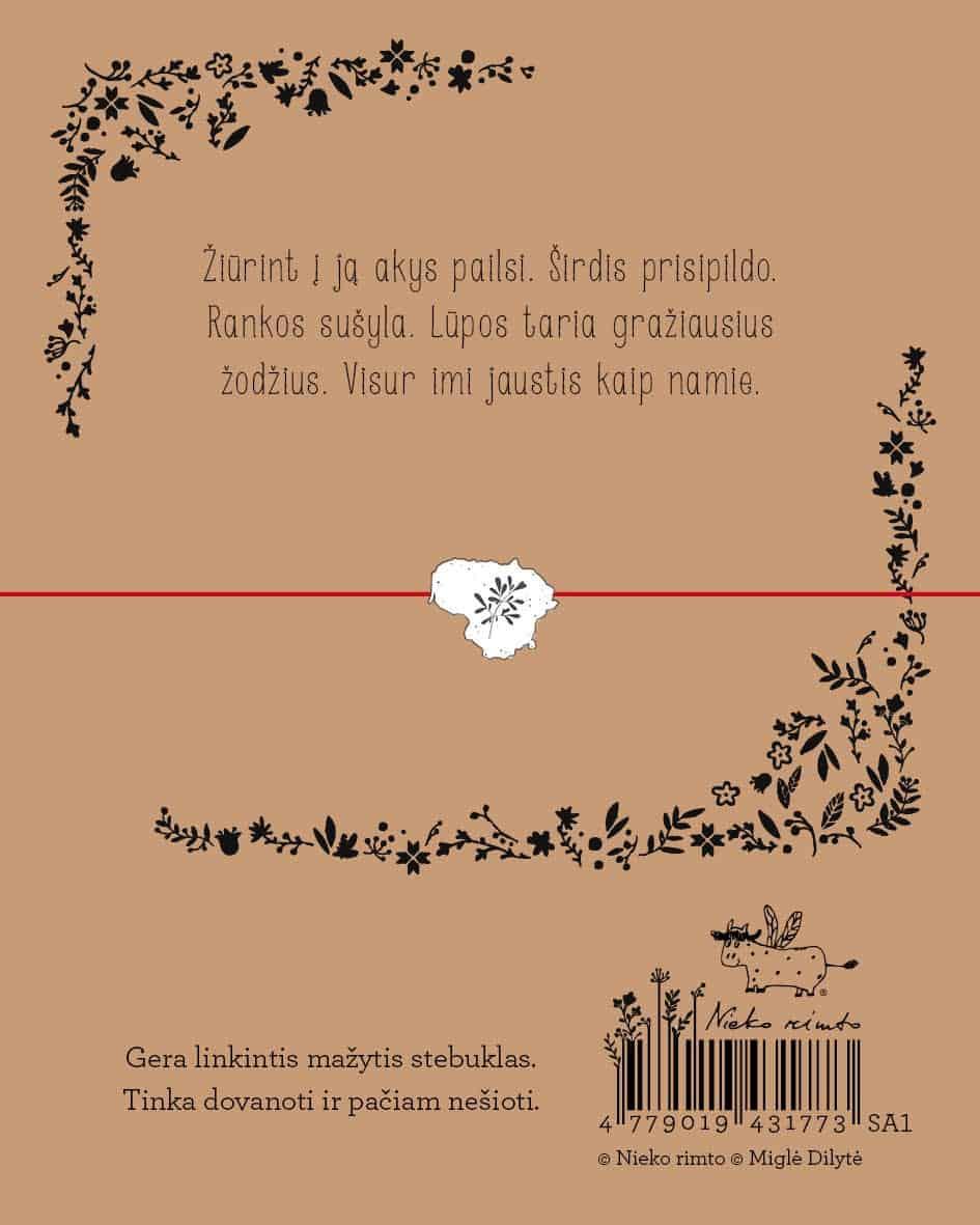 """SA1. Sėkmės apyrankė-talismanas """"Lietuva"""""""