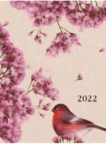 DK6 Laikas veikti 2022