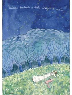Rausvas katinėlis ir labai žvaigždėta naktis