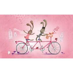 AP34 Zuikiai ant dviračio