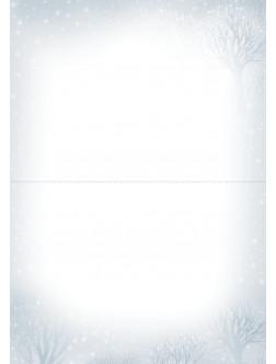 AM200/394 Kalėdinis atvirukas