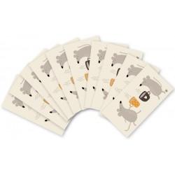 YMK105. Ypatingai mažų užrašų kortelių rinkinukas