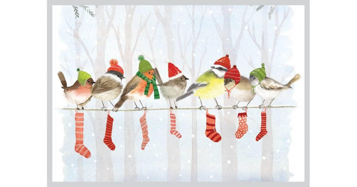 AMV212 Kalėdiniai paukščiai