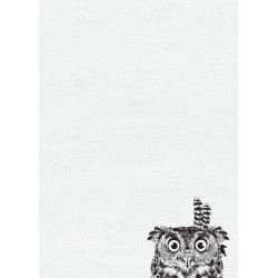 Bloknotas su pelėda