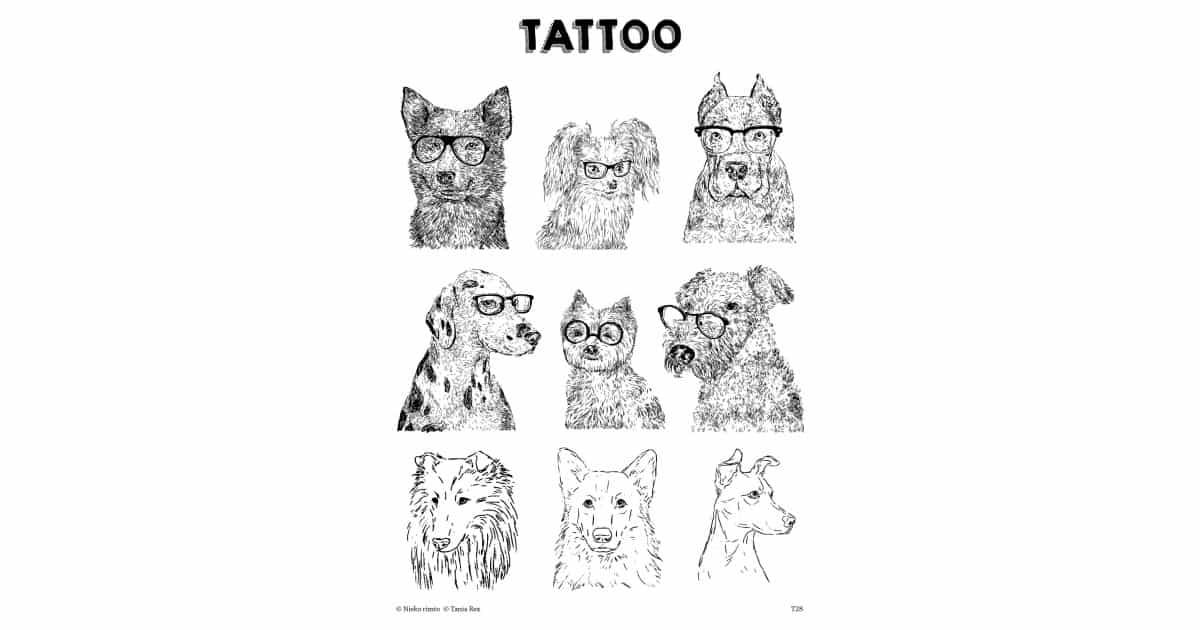 T28. Laikinos tatuiruotės su Tanios Rex piešiniais