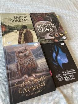 Verstinės knygos kelionė: kaip užsienio autorių knygos atsiduria mūsų knygynuose?